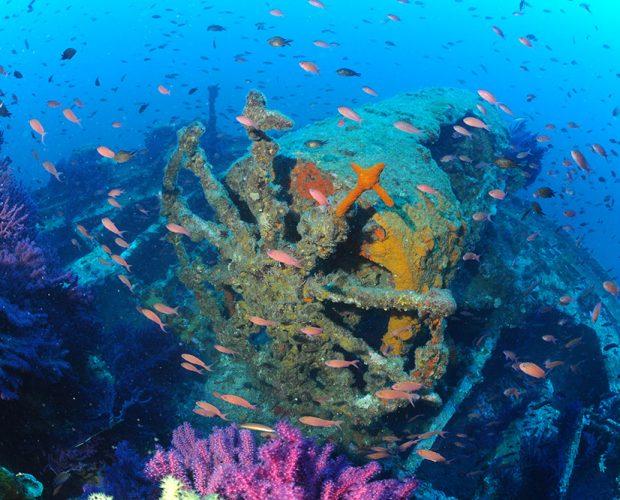 Ecole de Plongée Presqu'île de Giens
