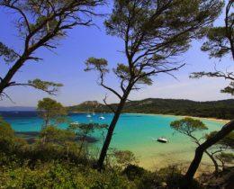 Plage de sable blanc sur l'ile de Porquerolles