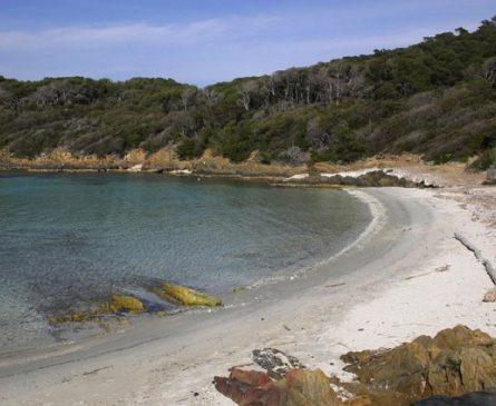 Plage du Sud sur l'île de Port-Cros