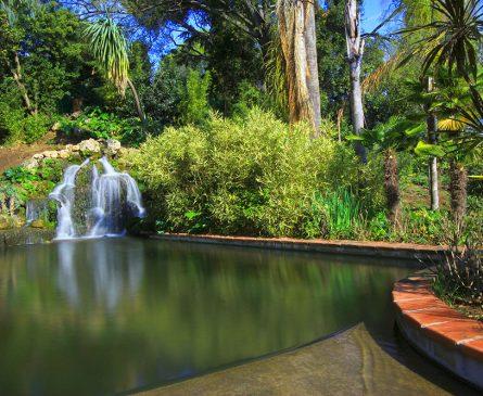 visite jardins remarquables à Hyères